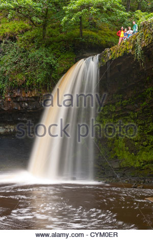Waterfall in rural forest - Stock Photo
