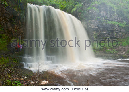 Time lapse view of waterfall in forest - Stock Photo