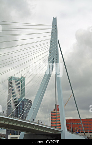 Erasmusbrug (Erasmus Bridge), across the Nieuwe Maas river, Rotterdam, Netherlands. The bridge is also nicknamed - Stock Photo