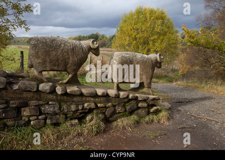 Sheep Sculptures Created by Artist Keith Alexander on the Pennine Way Footpath Near Low Force in Teesdale County - Stock Photo