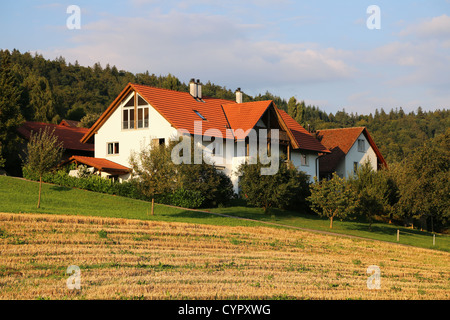 Houses in Switzerland surrounded by fresh green trees - Stock Photo
