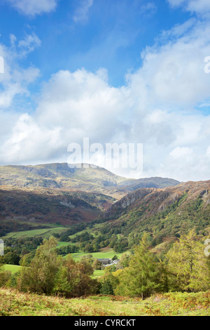 Autumn time near Tarn Hows with the Coniston fells in the distance,  Lake District National Park, Cumbria, England - Stock Photo