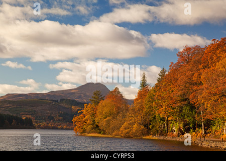Autumn colours at Loch Ard. Ben Lomond is in the background. - Stock Photo
