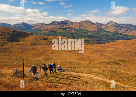 Walkers ascending Cruinn a'Bheinn from Cailness on Loch Lomond. The Arrochar Alps are in the background. - Stock Photo