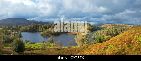 Panorama of Tarn Hows in early autumn with Coniston Fells in the distance,  Lake District National Park, Cumbria, England, UK