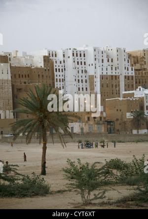 Palm Trees, Playground And White Skycrapers In Shibam, Yemen - Stock Photo