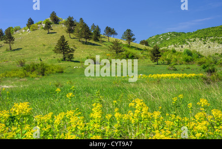 Mountain landscape in Lika , Croatia - Stock Photo