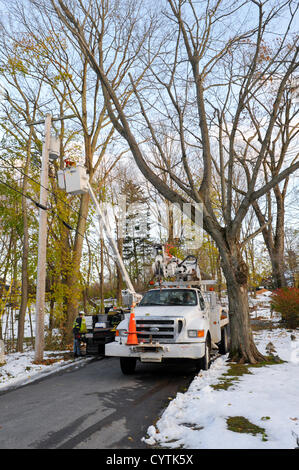 USA, 9 November 2012: Sandy Day 11 - Crews from across America lend a hand in Westchester County NY.  At left, Jimmy - Stock Photo