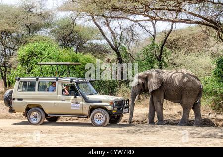 LAKE MANYARA NATIONAL PARK, Tanzania - An elephant walks up to a safari vehicle with tourists at Lake Manyara National - Stock Photo