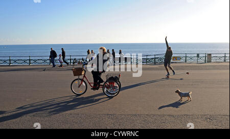 Brighton Sussex UK 11 November 2012 - People out enjoying the Autumn sunshine on Brighton and Hove seafront this - Stock Photo