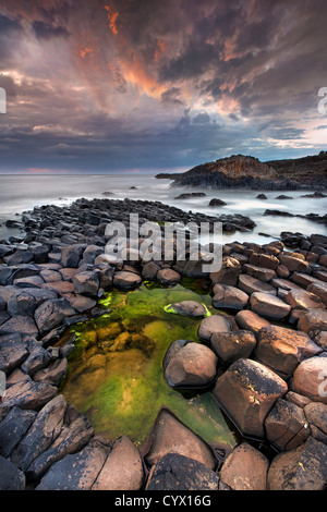 The Giants Causeway at dusk. Northern Ireland. - Stock Photo