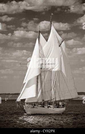 A schooner sailboat participating in the Port Townsend, Washington Wooden Boat Festival under full sail on Puget - Stock Photo