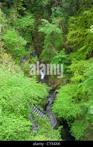 Wales, Devil's Bridge Falls - Stock Photo
