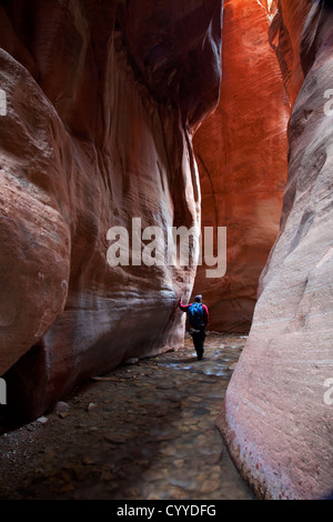 Man Hiking in Kanarra Creek Slot Canyon, near Zion National Park, Utah - Stock Photo