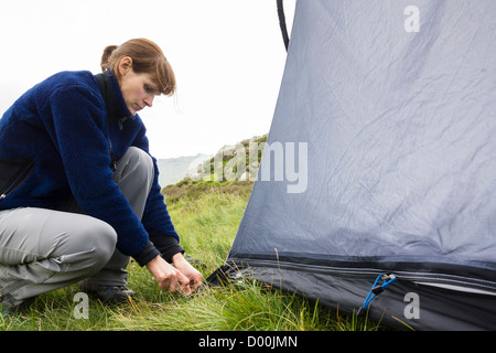 A woman pushing in a tent peg on grassy ground. - Stock Photo
