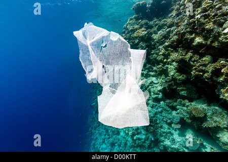 A waste plastic bag floats in the sea next to a coral reef wall - Stock Photo