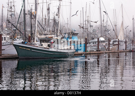 Fishing boats along the Newport Pier and Oregon's Yaquina Bay attract sea gulls and this sea lion looking for breakfast - Stock Photo