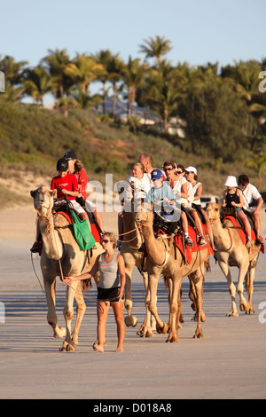 Camel Tour for tourists. Cable Beach, Broome, Western Australia.