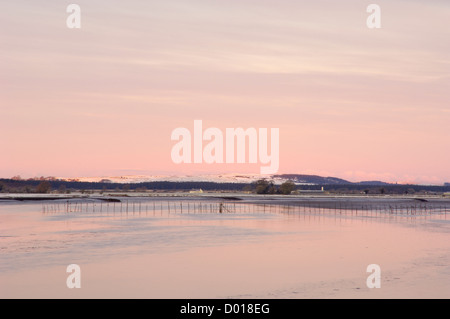 Salmon fishing nets, Solway Firth, near Creetown, Dumfries & Galloway, Scotland - Stock Photo