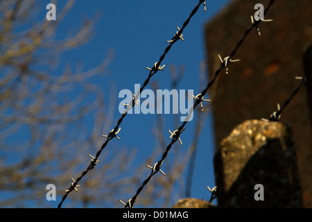 barbed wire against clear blue sky - Stock Photo