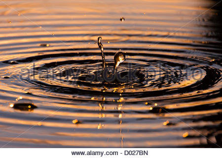 Ripples in the water - Stock Photo