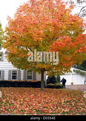 AUTUMN SCARSDALE NEW YORK USA - Stock Photo