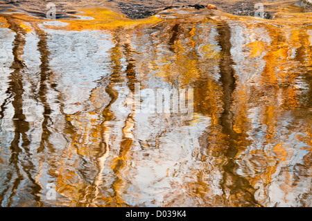 Scenic autumn waterfall reflections of cottonwood trees in the Boise River along the Boise River Greenbelt. Boise, - Stock Photo