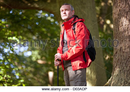 A mature man standing in woodland - Stock Photo
