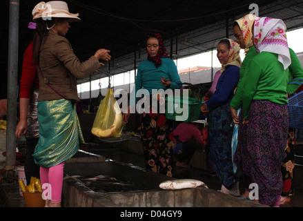 Women buying fish, Sunday market, Menghun, Yunnan, China - Stock Photo
