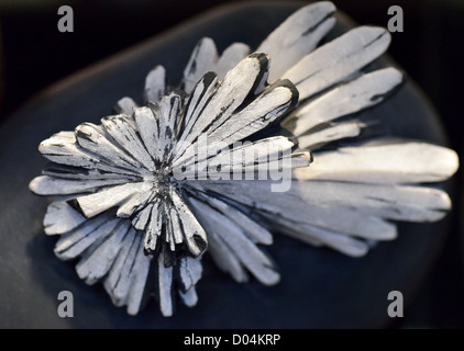 Specimen of chrysanthemum stone, an aggretage of mineral celestine from Liuyang, Hunan Province, China. - Stock Photo