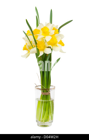 A bouquet of narcissuses in a glass with water isolated over white - Stock Photo
