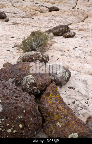 Volcanic boulders, from Boulder Mountain, on eroded Navajo sandstone, Grand Staircase-Escalante National Monument, - Stock Photo