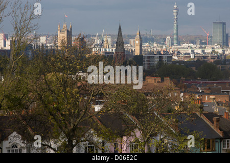 100 year-old ash trees seen overlooking south London towards Westminster and the Houses of Parliament. Stretching - Stock Photo
