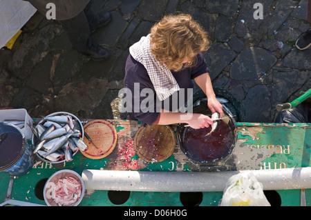 Preparing fish,Devon, UK - Stock Photo
