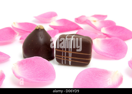 pink rose leaves with chocolate bonbons for Valentine's day over white background - Stock Photo