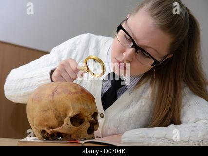 Woman examining a human skull - Stock Photo