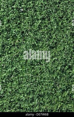Fake Grass used on sports fields for soccer, baseball and football - Stock Photo