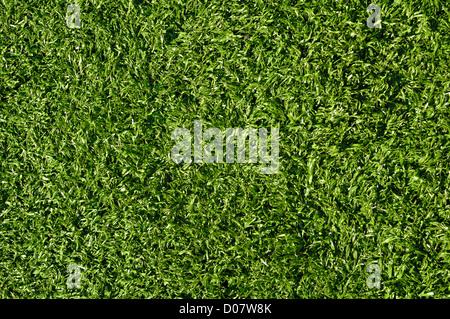 Fake Grass used for Soccer, Football, Baseball or Golf - Stock Photo
