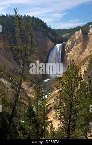 View of Lower Falls from Red Rock Point, Grand Canyon of the Yellowstone River, Yellowstone National Park, Wyoming, - Stock Photo