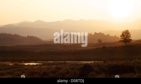 Sunrise over the Lamar Valley, Yellowstone National Park, Wyoming, USA - Stock Photo