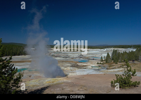 Black Growler Steam Vent in Porcelain Basin, Norris Geyser Basin, Yellowstone National Park, Wyoming, USA - Stock Photo
