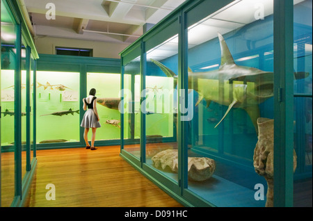 Girl in museum - Stock Photo