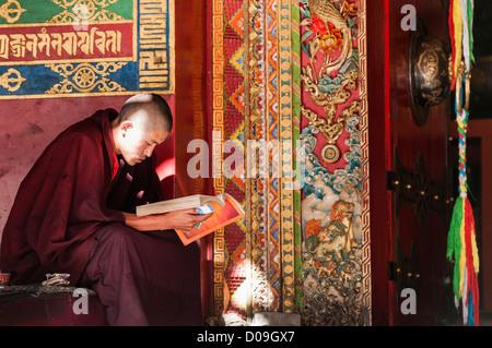 Young Buddhist monk studies prayer book outside temple, Tashilhunpo Monastery, Shigatse, Tibet, China - Stock Photo
