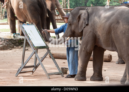 THAI ELEPHANT CONSERVATION CENTER LAMPANG YOUNG ELEPHANT PAINGIN PICTURE DURING PERFORMANCE ORGANISED FOR TOURISTS - Stock Photo