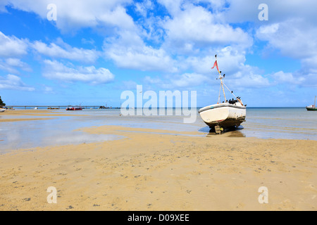 A flock of crows perching on a fishing boat stranded at low tide. Inhaca Island Mozambique - Stock Photo