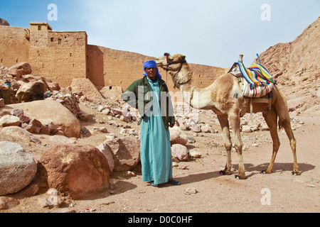 EGYPT - FEBRUARY 5: Camel guide climbing to Mount Sinai on February 5, 2011 in St Catherine's district, Egypt. - Stock Photo