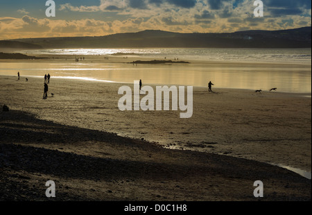 The beach at Mounts Bay, Cornwall. People enjoy a walk on the beach with their dogs. - Stock Photo