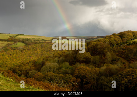 Rainbow over Oak and beech woodlands in autumn, in the East Lyn valley at Brendon, Exmoor National Park, Devon, - Stock Photo