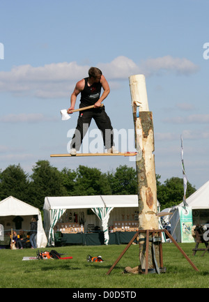 Tree Felling Competition, Ragley Hall, Warwickshire, UK. - Stock Photo