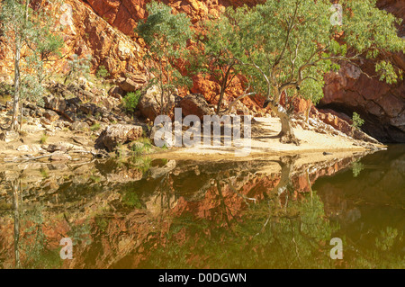 Red cliffs and ghost gum reflections in Ormiston Gorge, West MacDonnell National Park, Alice Springs, Northern Territory, - Stock Photo